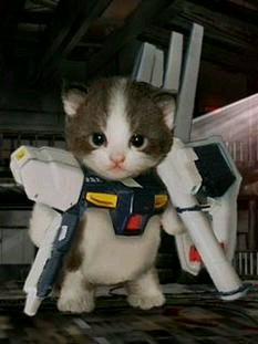 ガンダムに変身する猫